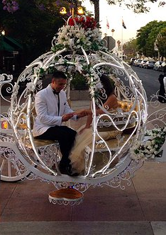 Carriage Cinderella 3